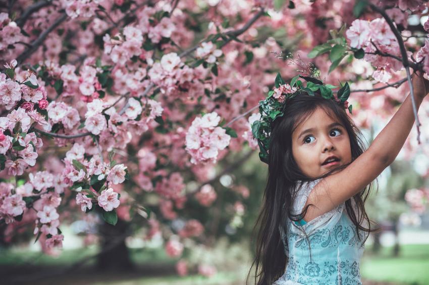 denver family photographer (2 of 8)
